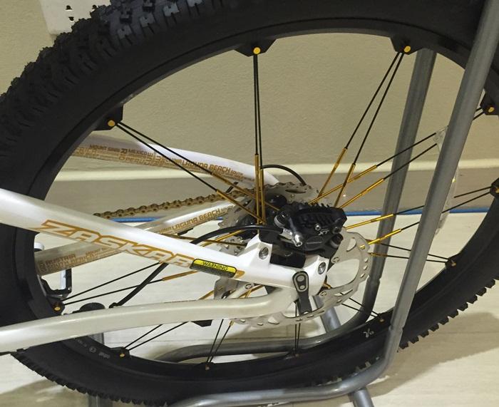 xe dap ma vang | Đẳng cấp với xe đạp mạ vàng 24K tại Việt Nam