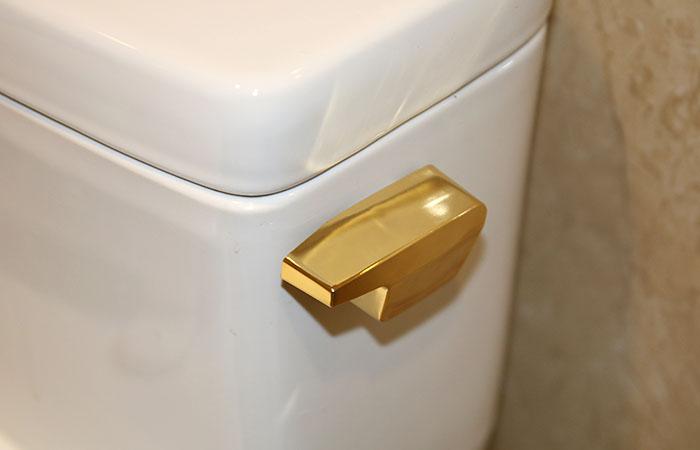 căn hộ mạ vàng, nhà dát vàng 24K