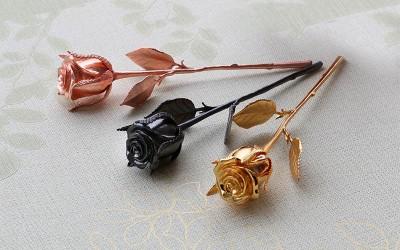 Hoa hong ma vang den, Karalux giới thiệu bông hồng mạ vàng đen tại Hà Nội, Tp HCM